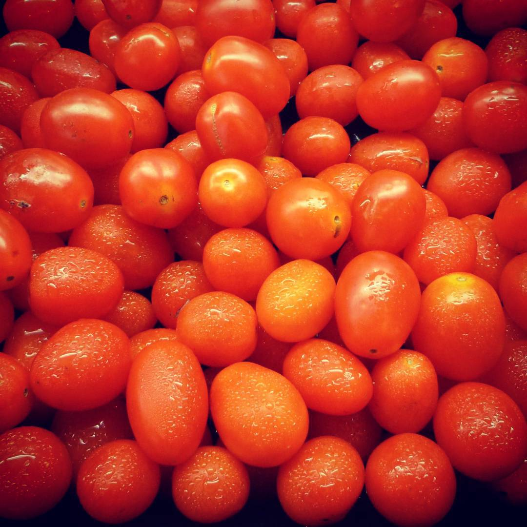 small-tomatoes-1